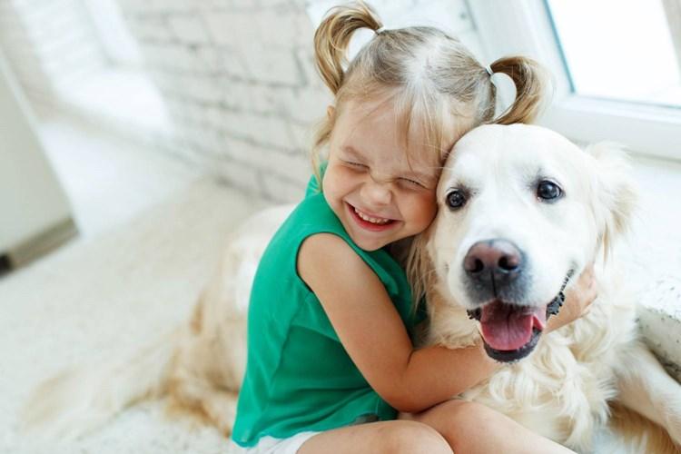 Za uplynulý rok vzrostl počet psů v domácnostech o 15 %. Kolik stojí péče o psa?
