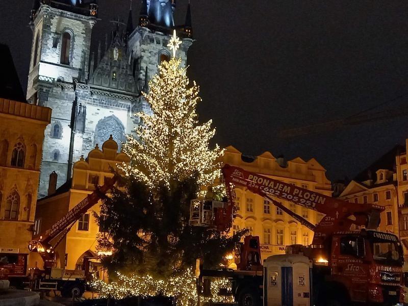 Popis: Zdobení vánočního stromu.