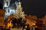 Až se Pražané ráno probudí, bude už vánoční strom zářit. Noční rozsvícení bude na videu
