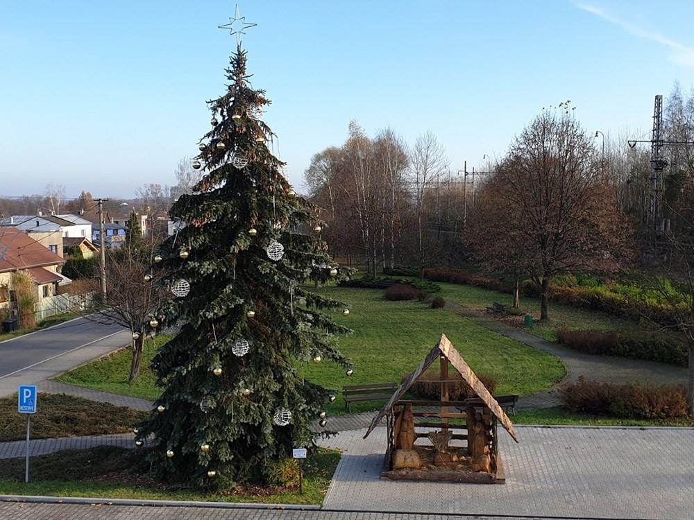 Popis: Vánoční strom v Petrovicích.