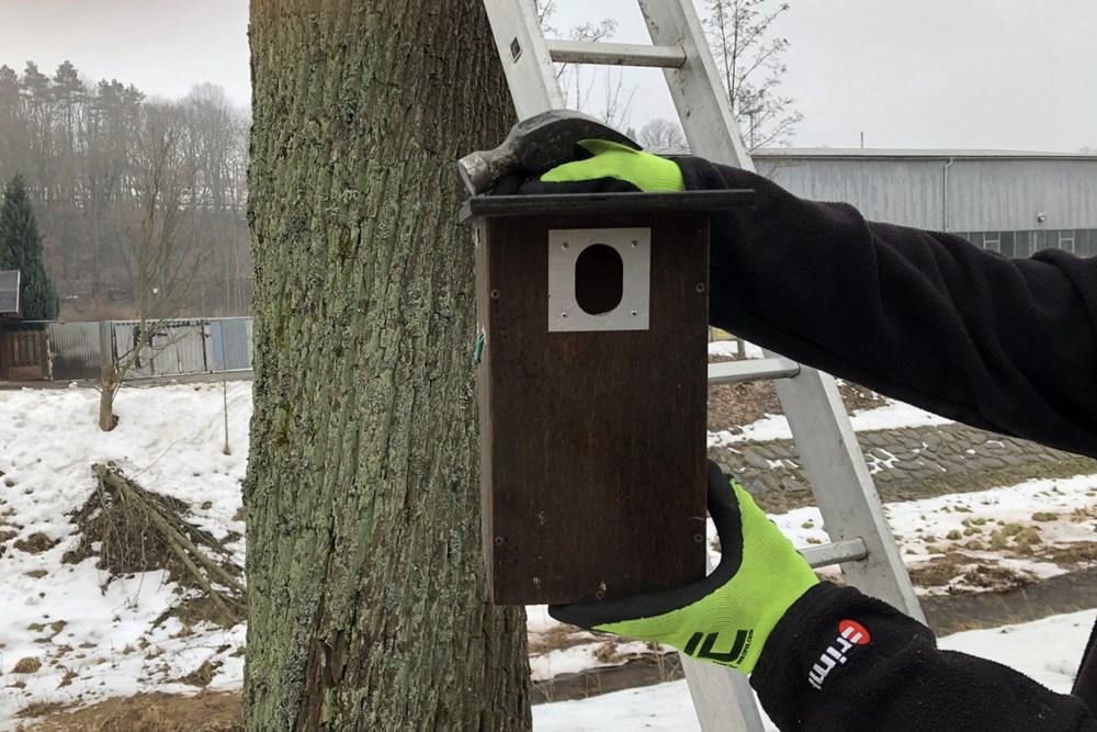 V těchto dnech probíhá instalace dalších ptačích budek.