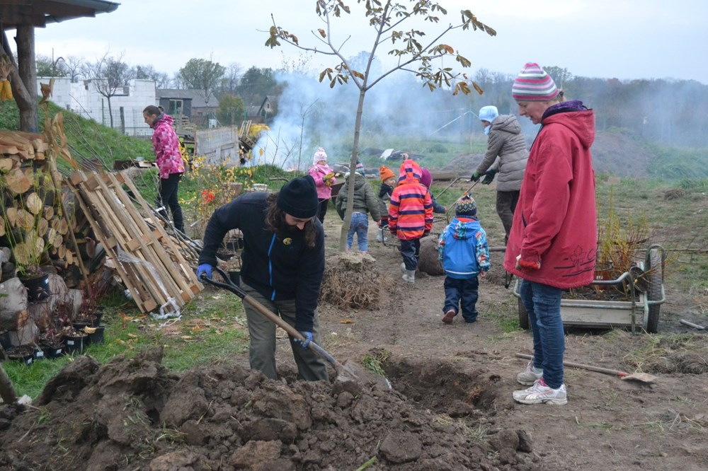 Lidé z celé země se zapojili do výsadeb stromů na 2670 místech