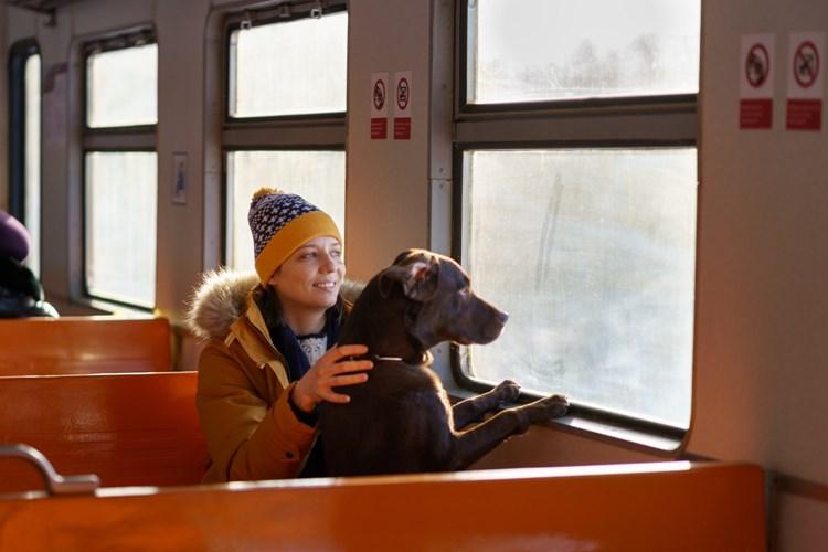 Výluka trati 313 Milotice nad Opavou - Vrbno pod Pradědem