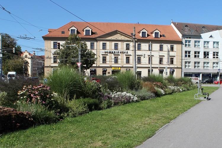 Nové trvalkové záhony a květiny na mostech ozdobí Budějovice