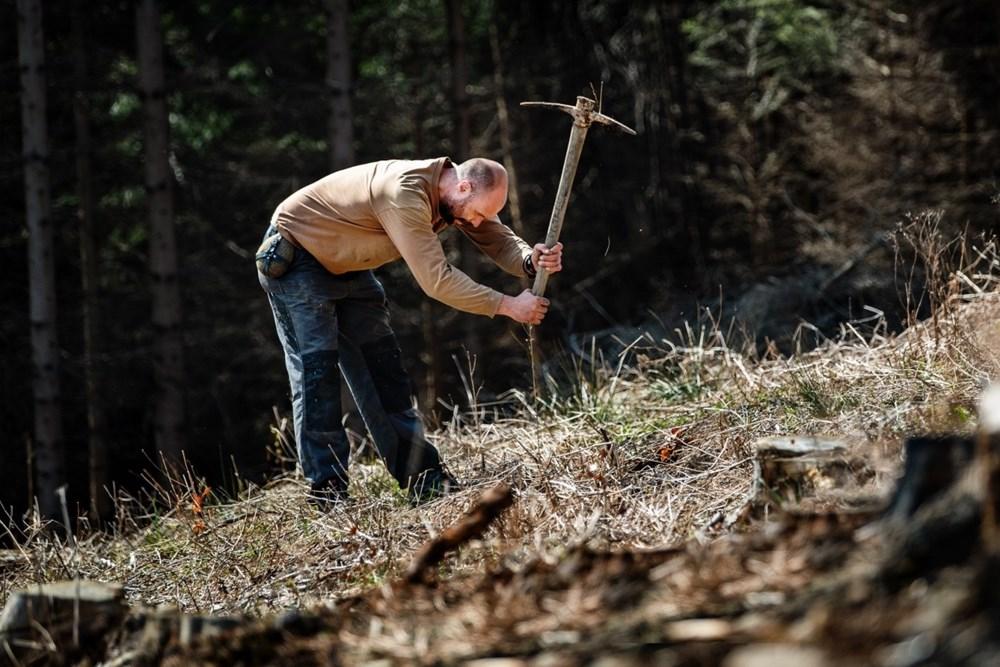 Výsadba stromů - stezka na Pinčanky.