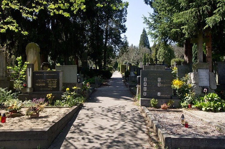 Ústřední hřbitov Brně