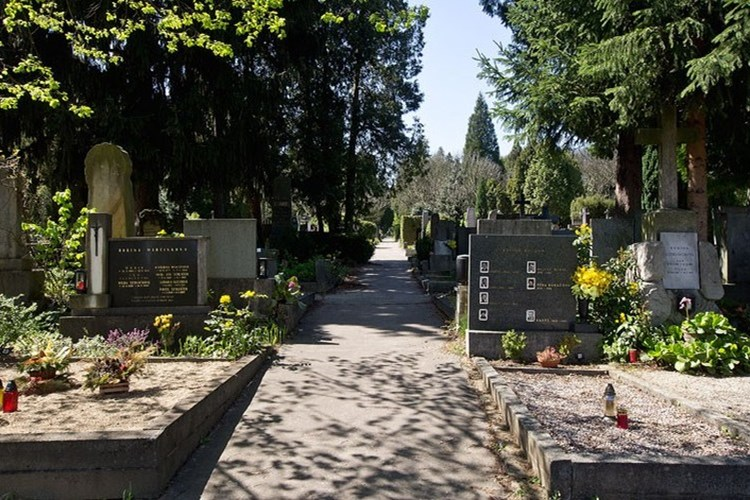 Paměť národa Jižní Morava bude s dobrovolníky znovu revitalizovat hroby na Ústředním hřbitově Brno