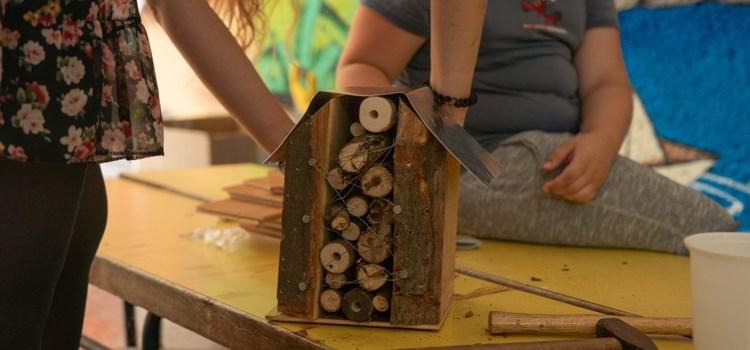 Hmyzí dílny v září ovládnou Ostravu