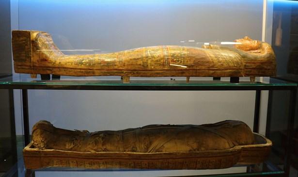 Popis: Výstava Tutanchamon RealExperience.