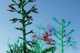 Bujná expozice ukazuje na vývoj plastových rostlin