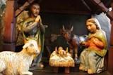 Přijďte si do zoo vyrobit adventní věnce, namalovat perníčky či jen načerpat sváteční náladu