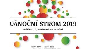 I letos ozdobí Krakonošovo náměstí vánoční strom