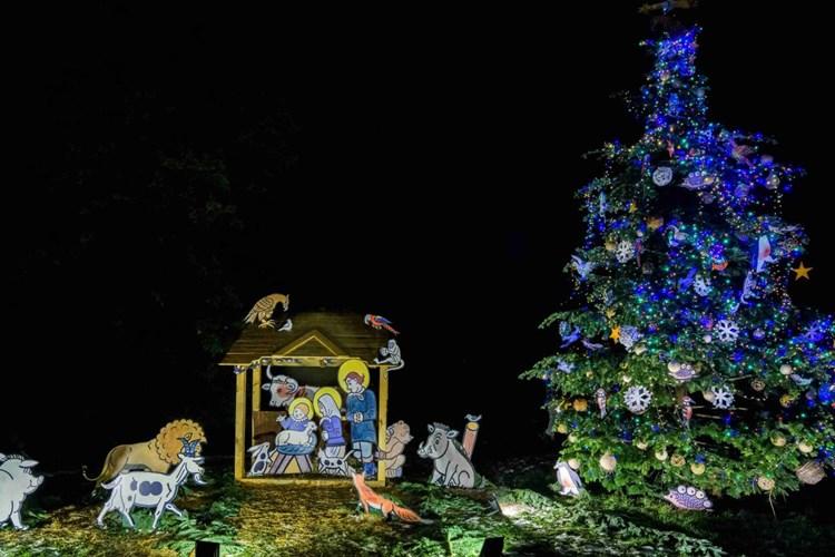 Zoo Praha v neděli rozsvítí vánoční strom a otevře knihobudku