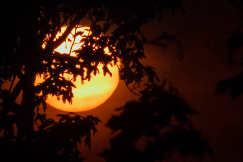 V pondělí 11. listopadu planeta Merkur přejde před Sluncem. Vzácný úkaz znovu uvidíme až v roce 2032!