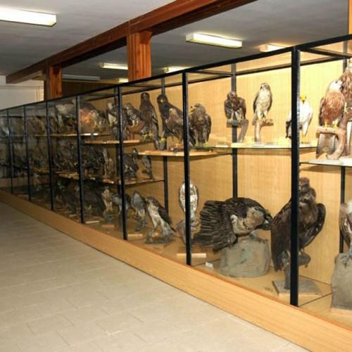 Ornitologická stanice Muzea Komenského v Přerově