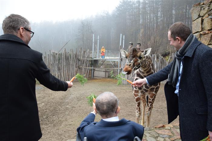 V Jihlavské ZOO rozšířili službu projektu Euroklíč. Kraj ji podpořil padesáti tisíci korunami