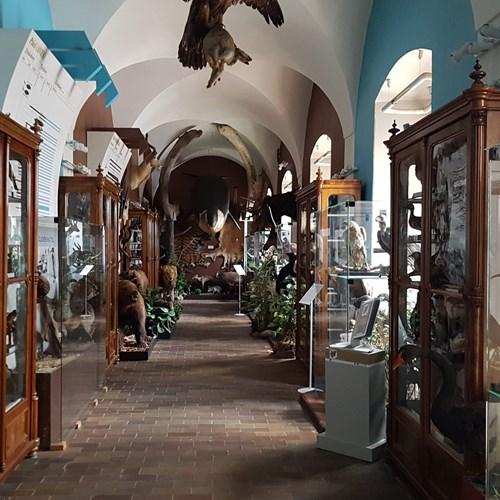 Vlastivědné muzeum a galerie v České Lípě