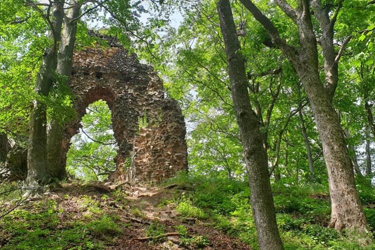 Zřícenina hradu Bradlec u Lomnice: méně známé místo, které stojí za návštěvu