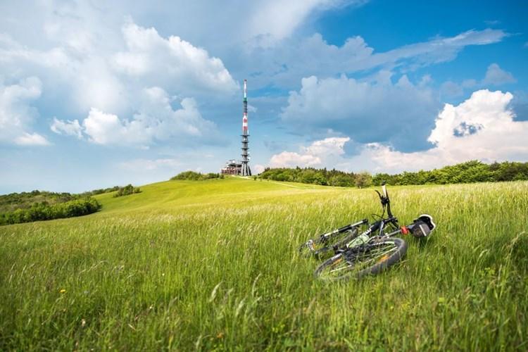 Velká Javořina je symbolem sounáležitosti Čechů a Slováků. Vede tady sedm turistických tras
