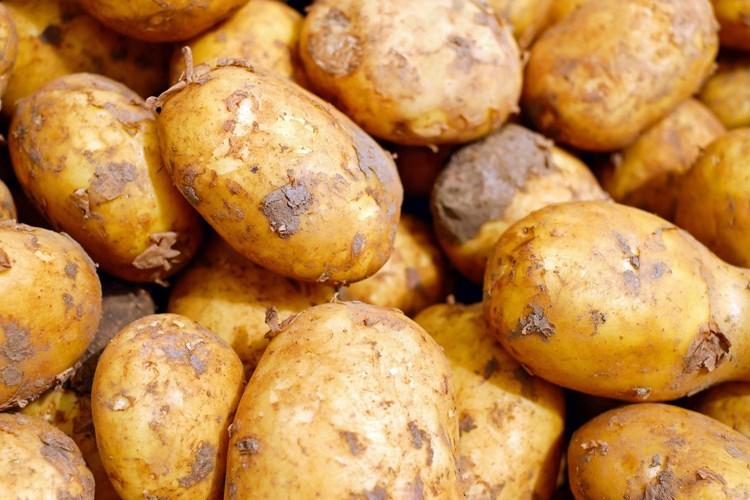 Pavel Chlouba bude vykládat o cestě do Peru, kam se vypravil kvůli bramborům