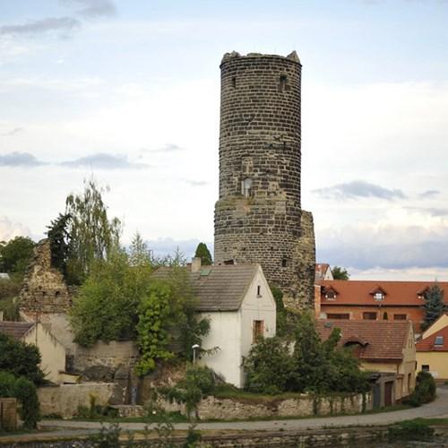 Oblastní muzeum Praha-východ - Zřícenina hradu Jenštejn
