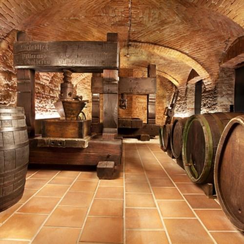 Národní zemědělské muzeum - Muzeum vinařství, zahradnictví a krajiny, Valtice