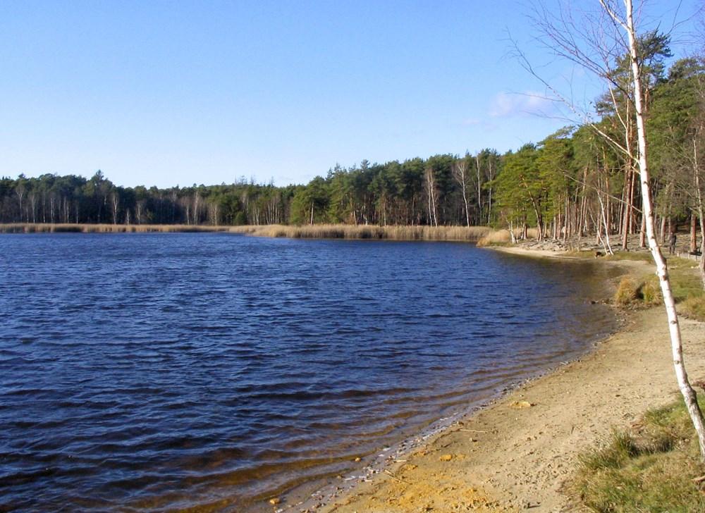 Kamenný rybník rozprostírající se na severním okraji Plzně.