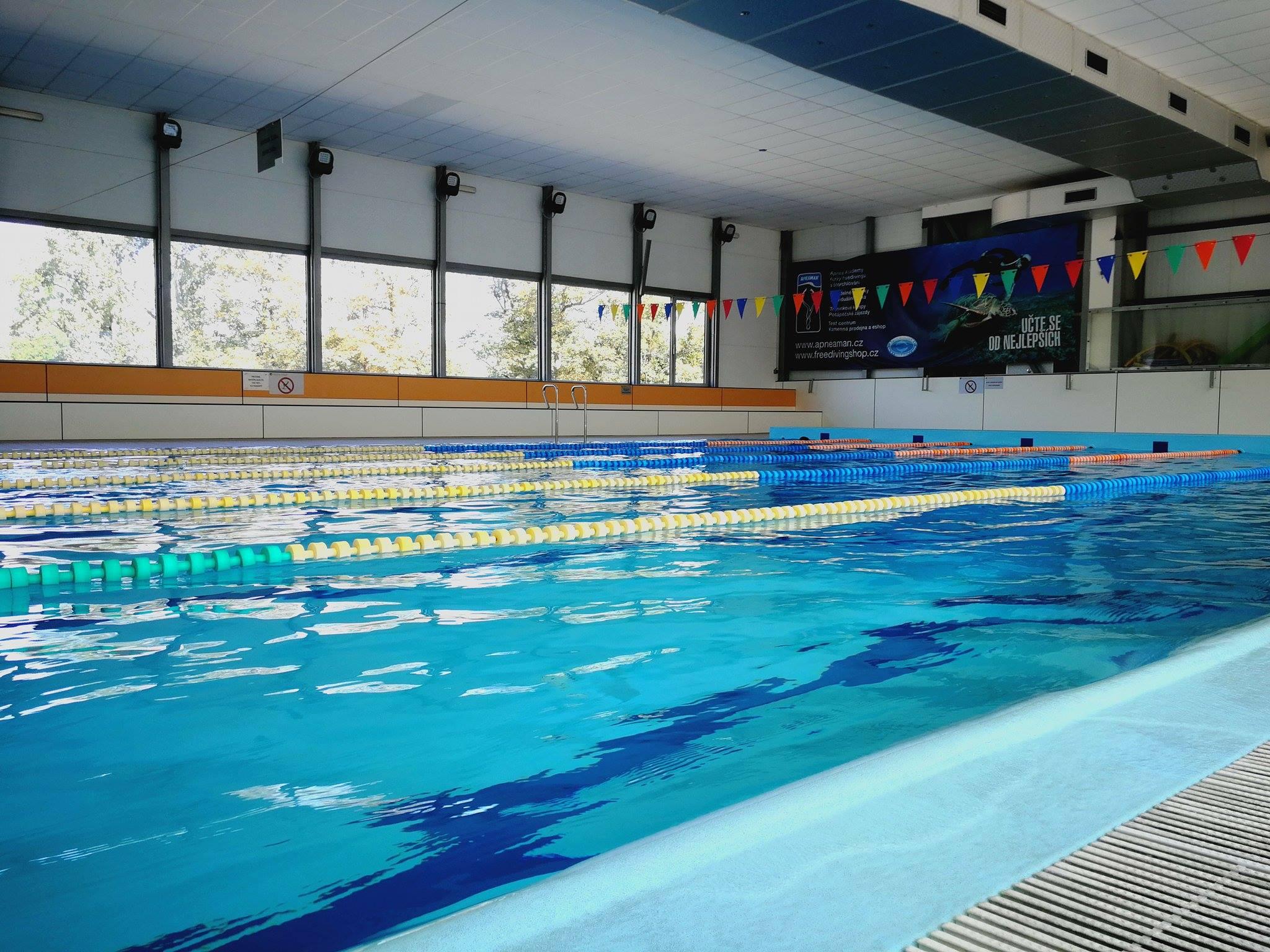 Plavecký bazén na Výstavišti od června v provozu